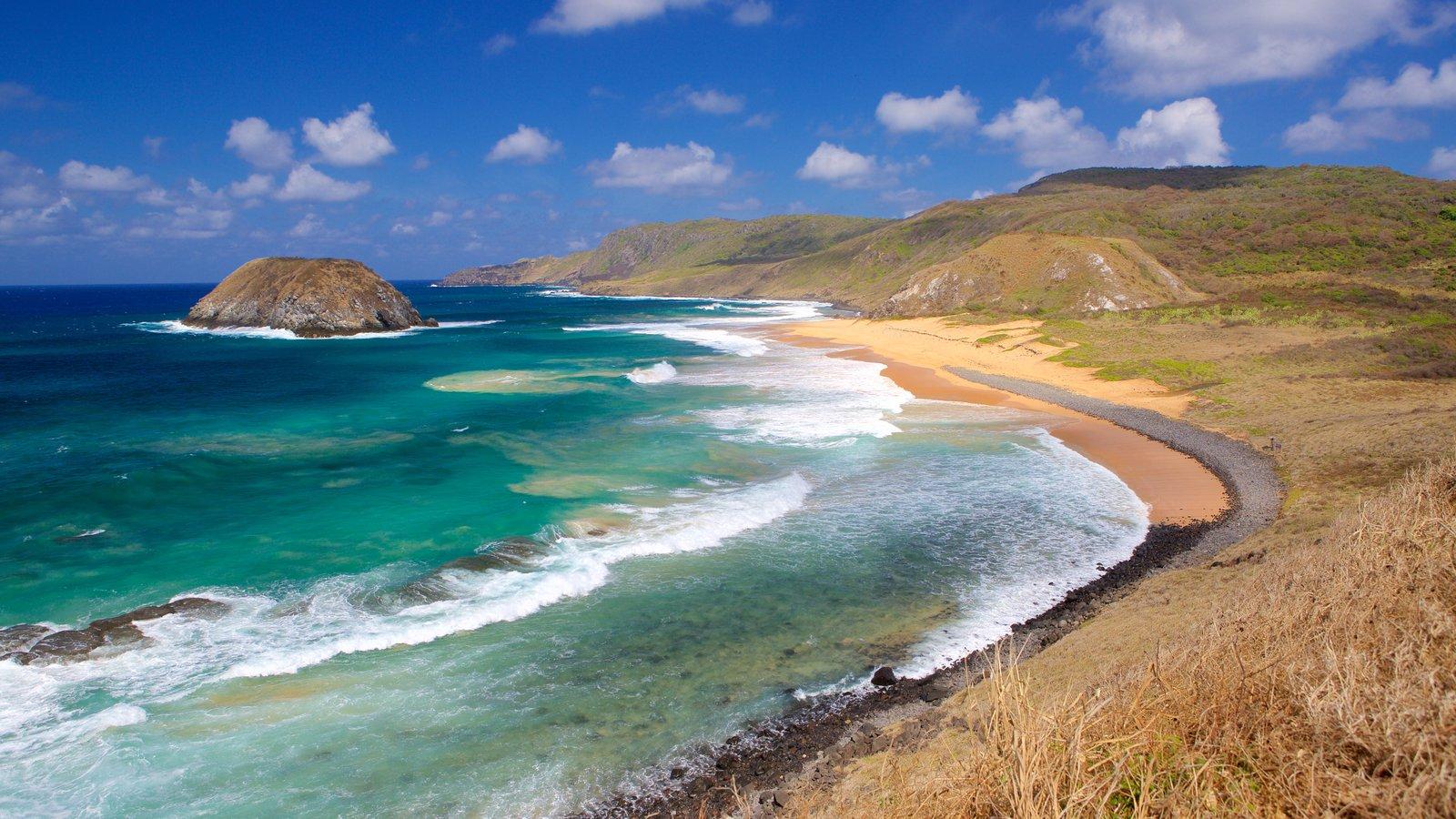 Praia do Leão mostrando uma praia, ondas e paisagens litorâneas