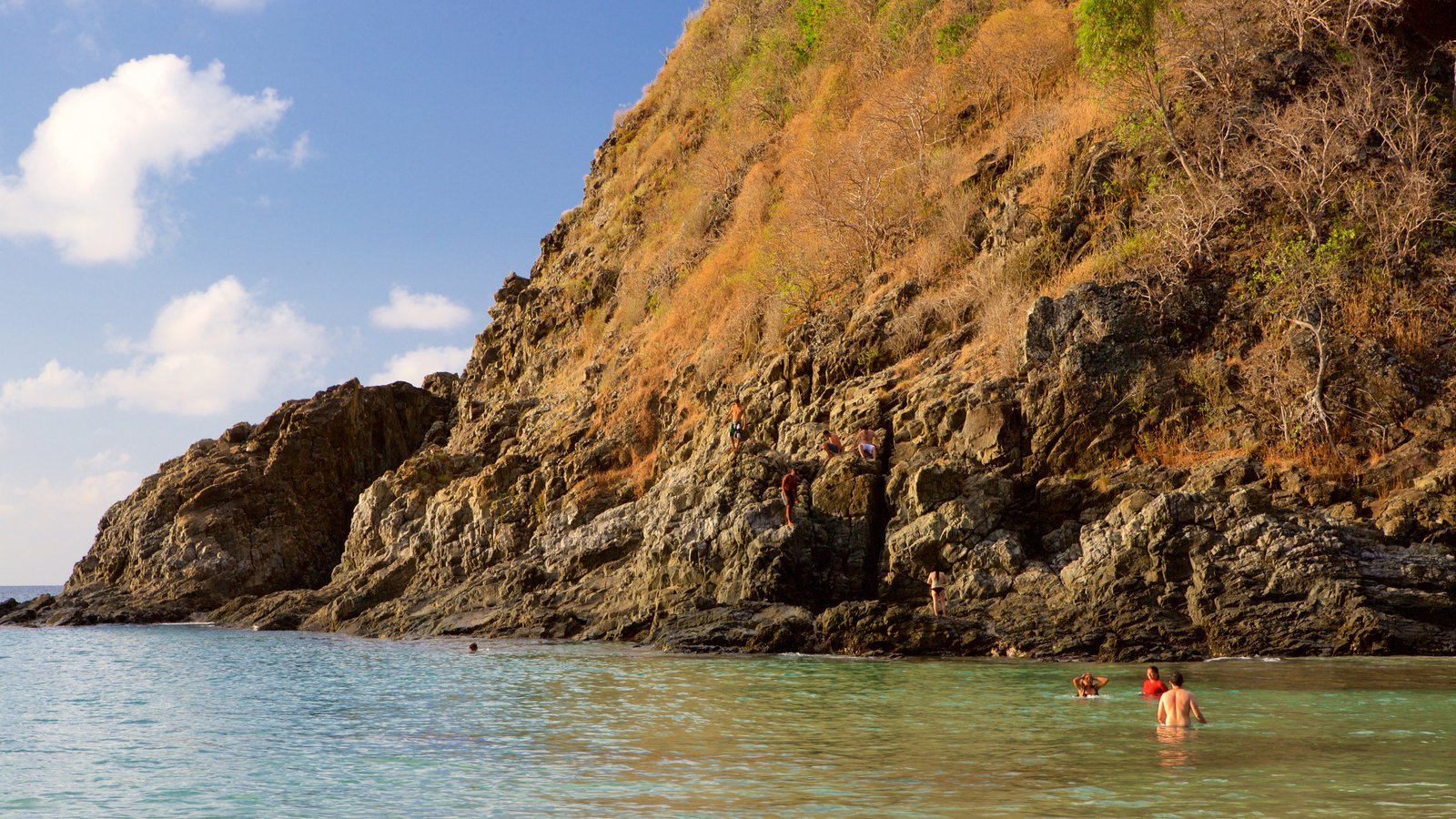 Praia do Cachorro que inclui natação, paisagens litorâneas e litoral acidentado