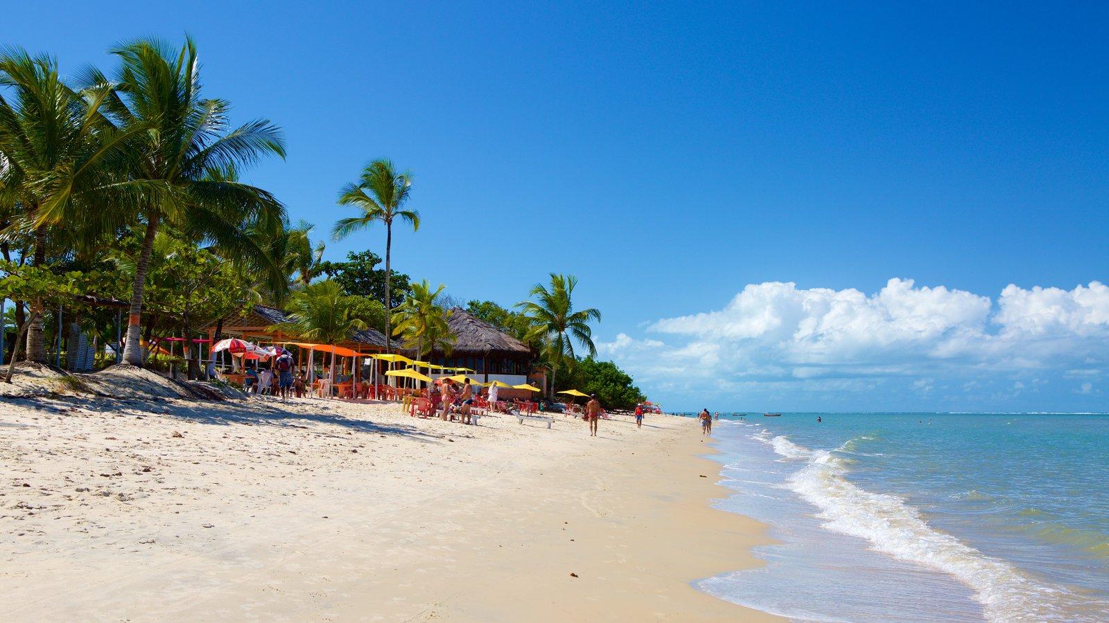 Praia do Mutá mostrando paisagens litorâneas, uma praia e cenas tropicais