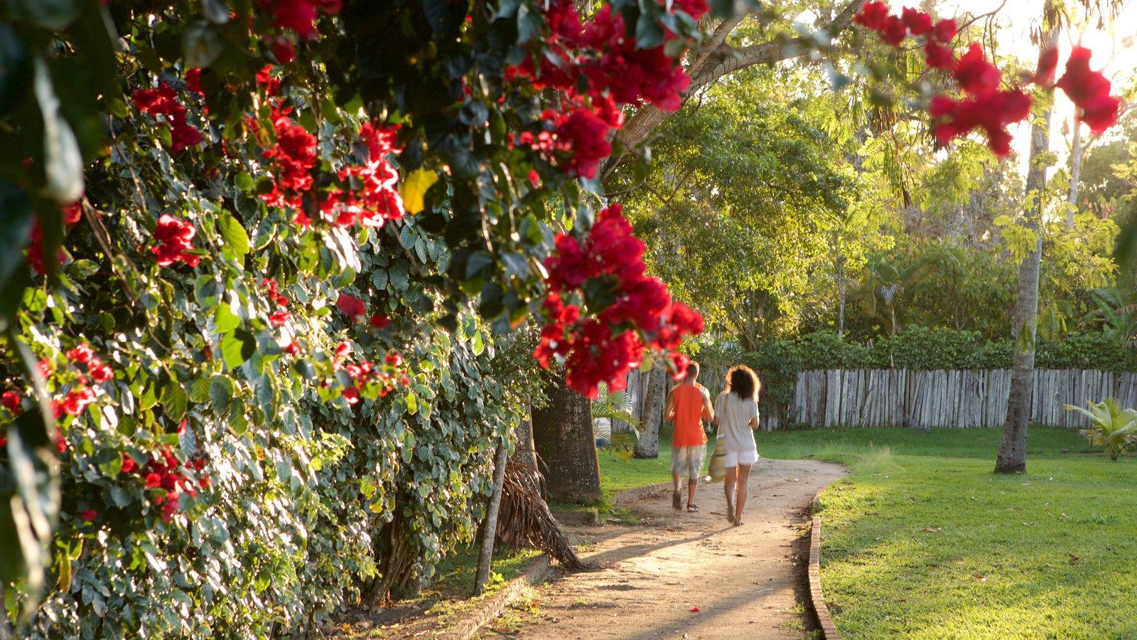 Porto Seguro caracterizando um jardim e flores assim como um casal