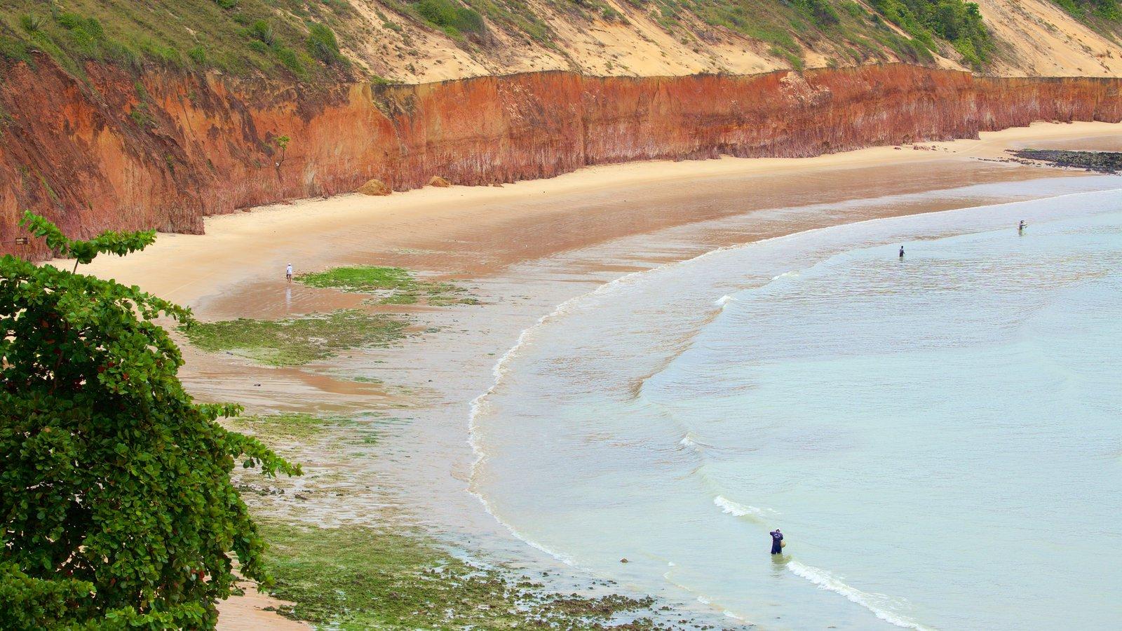 Baía Formosa mostrando paisagens litorâneas e uma praia