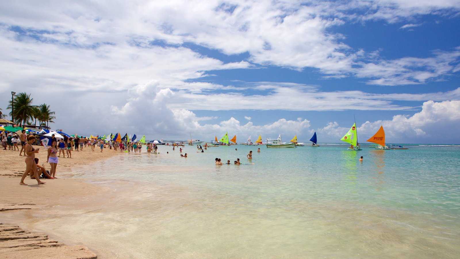Porto de Galinhas que inclui vela, paisagens litorâneas e uma praia de areia