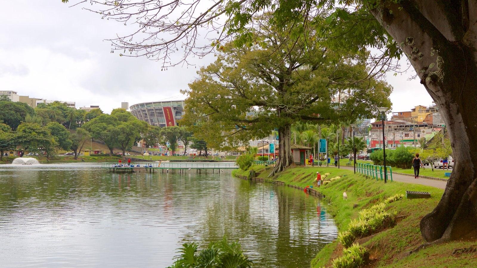 Estádio Fonte Nova caracterizando um lago ou charco e um parque