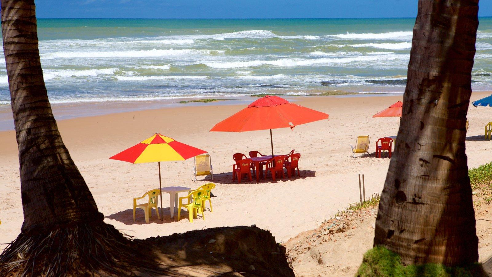 Flamengo Beach mostrando ondas, paisagens litorâneas e uma praia
