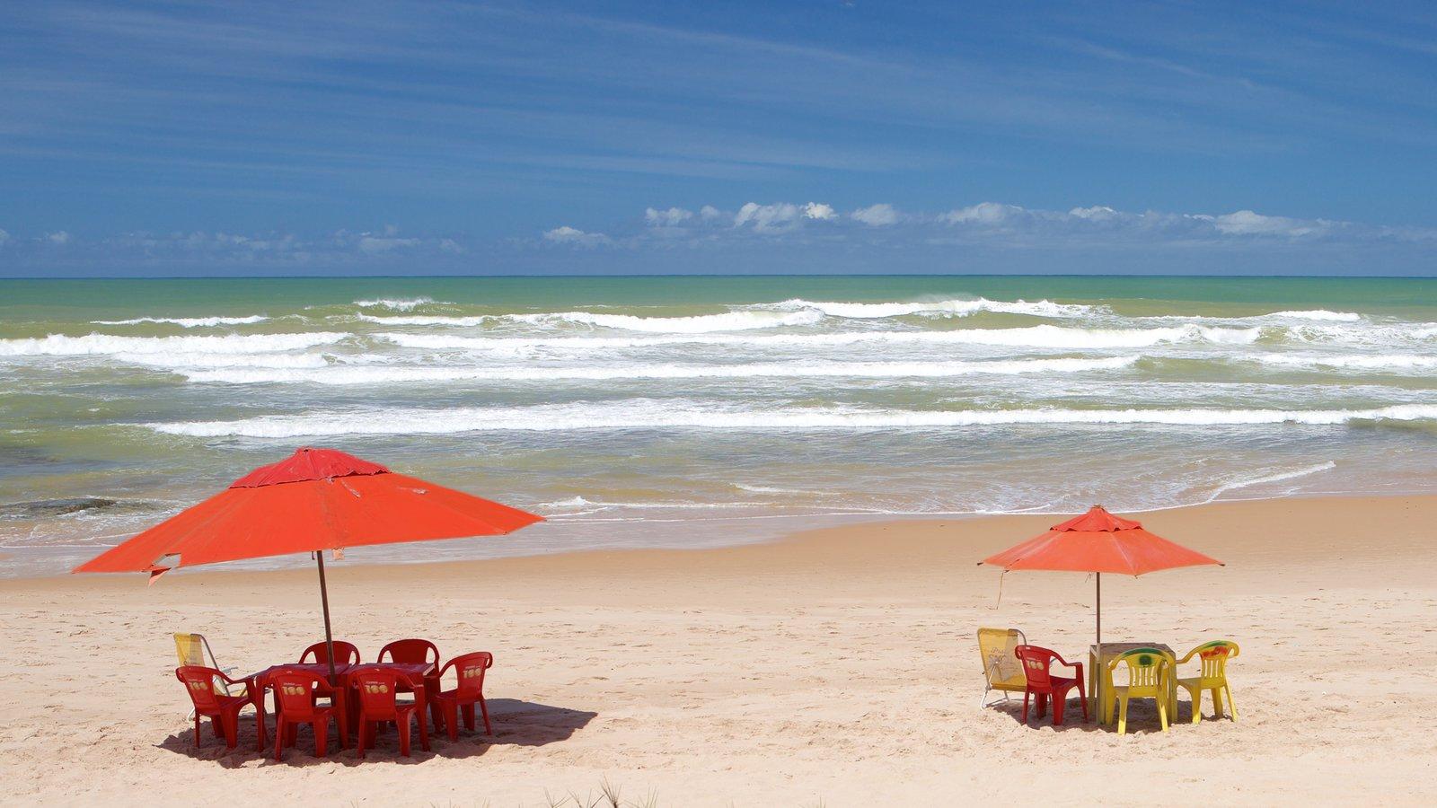 Flamengo Beach caracterizando uma praia, paisagens litorâneas e surfe