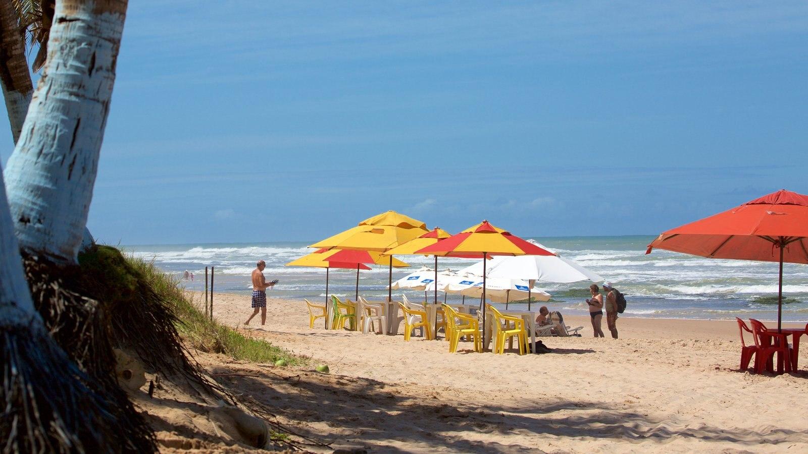 Flamengo Beach mostrando uma praia e paisagens litorâneas