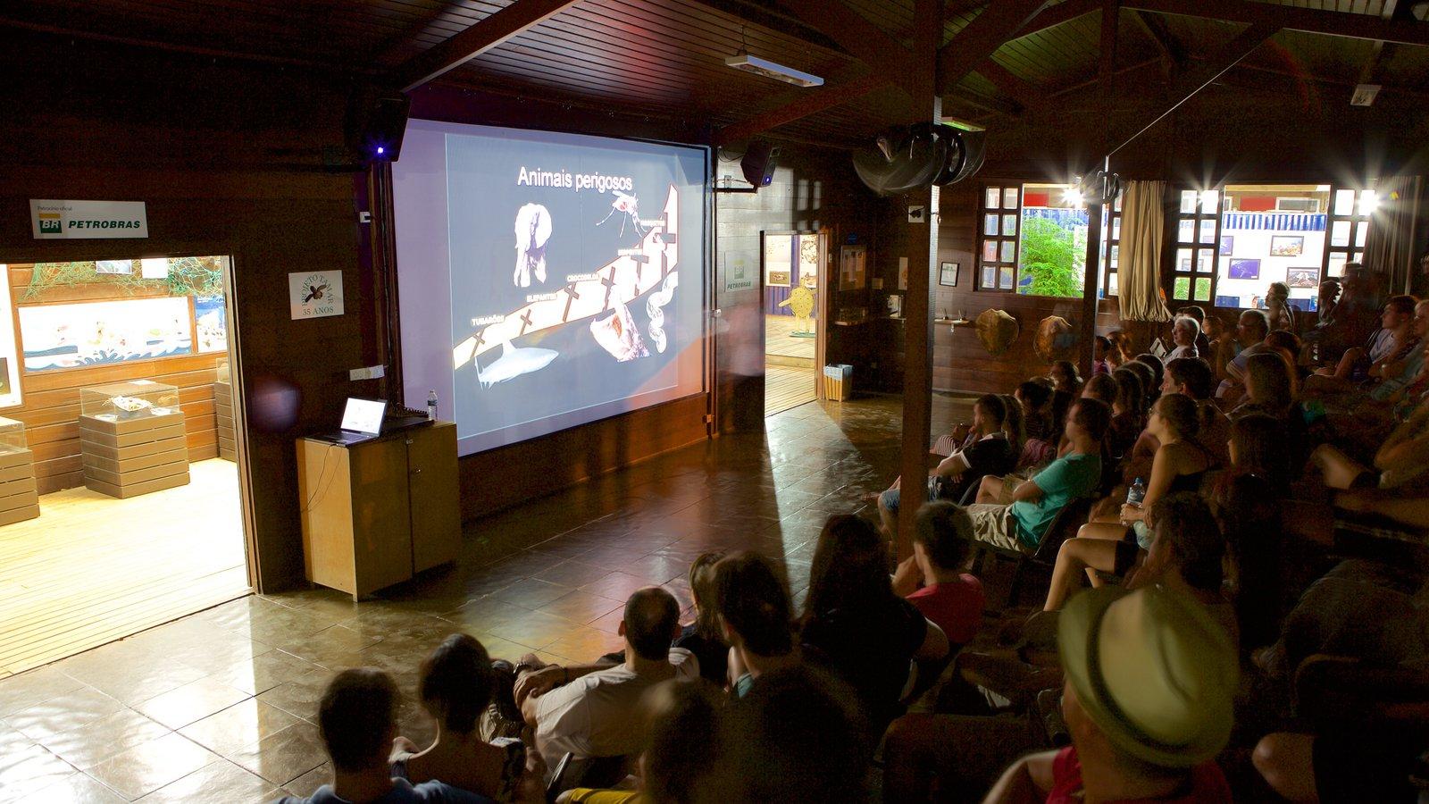 Projeto Tamar que inclui vistas internas assim como um grande grupo de pessoas