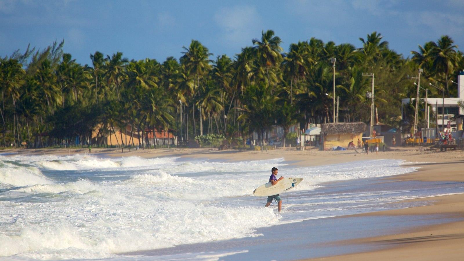 Praia de Maracaípe mostrando cenas tropicais, paisagens litorâneas e uma praia de areia