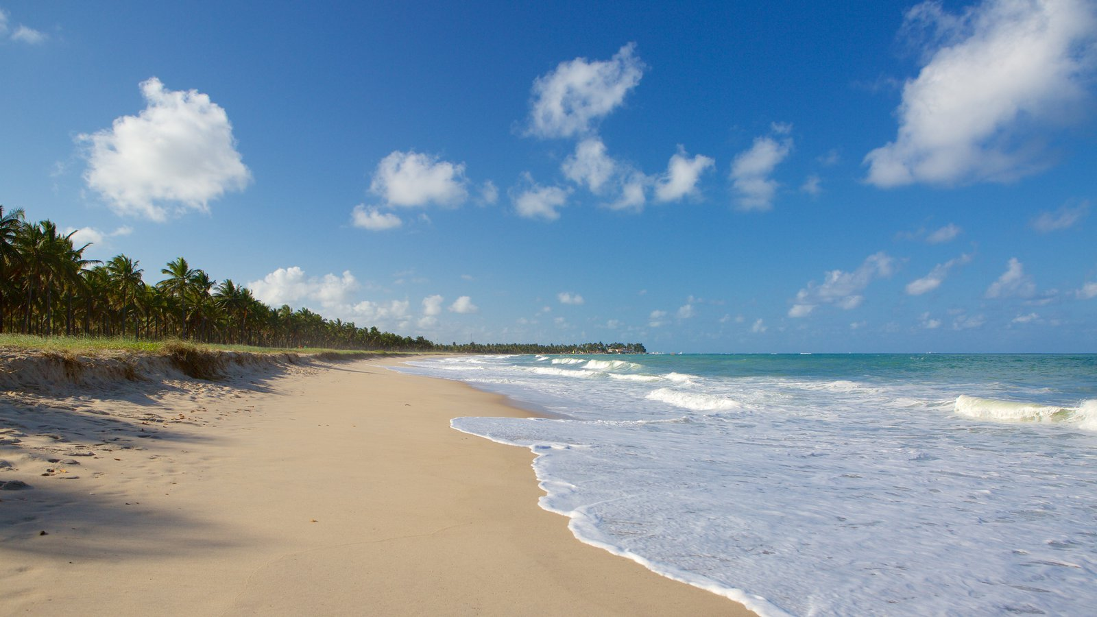 Praia de Maracaípe caracterizando uma praia de areia, paisagens litorâneas e cenas tropicais