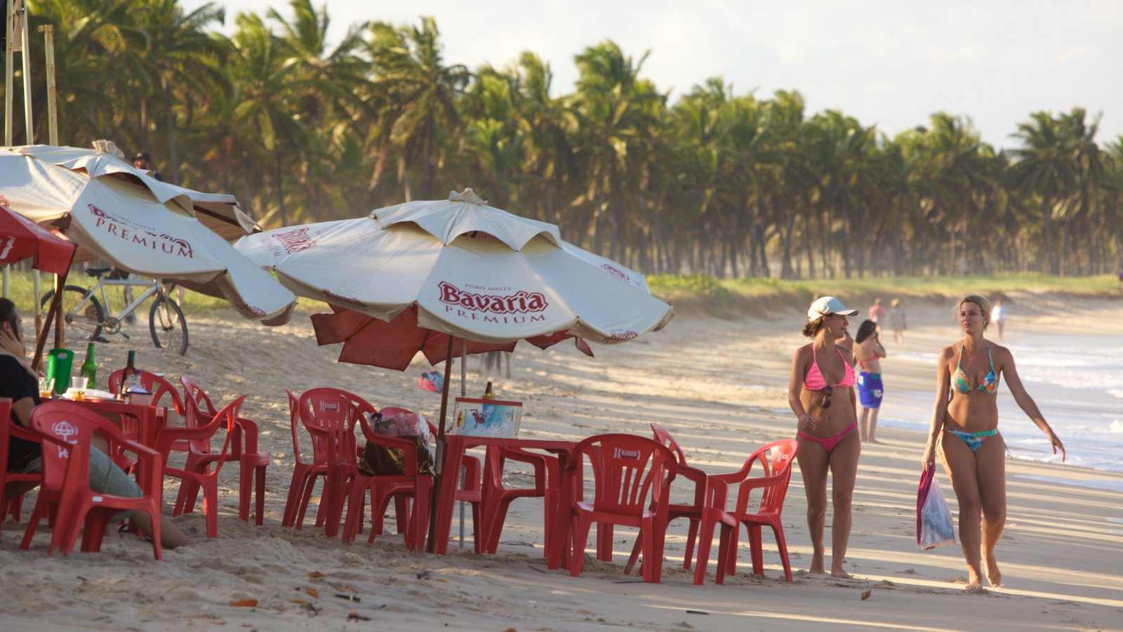 Praia de Maracaípe mostrando jantar ao ar livre, cenas tropicais e paisagens litorâneas