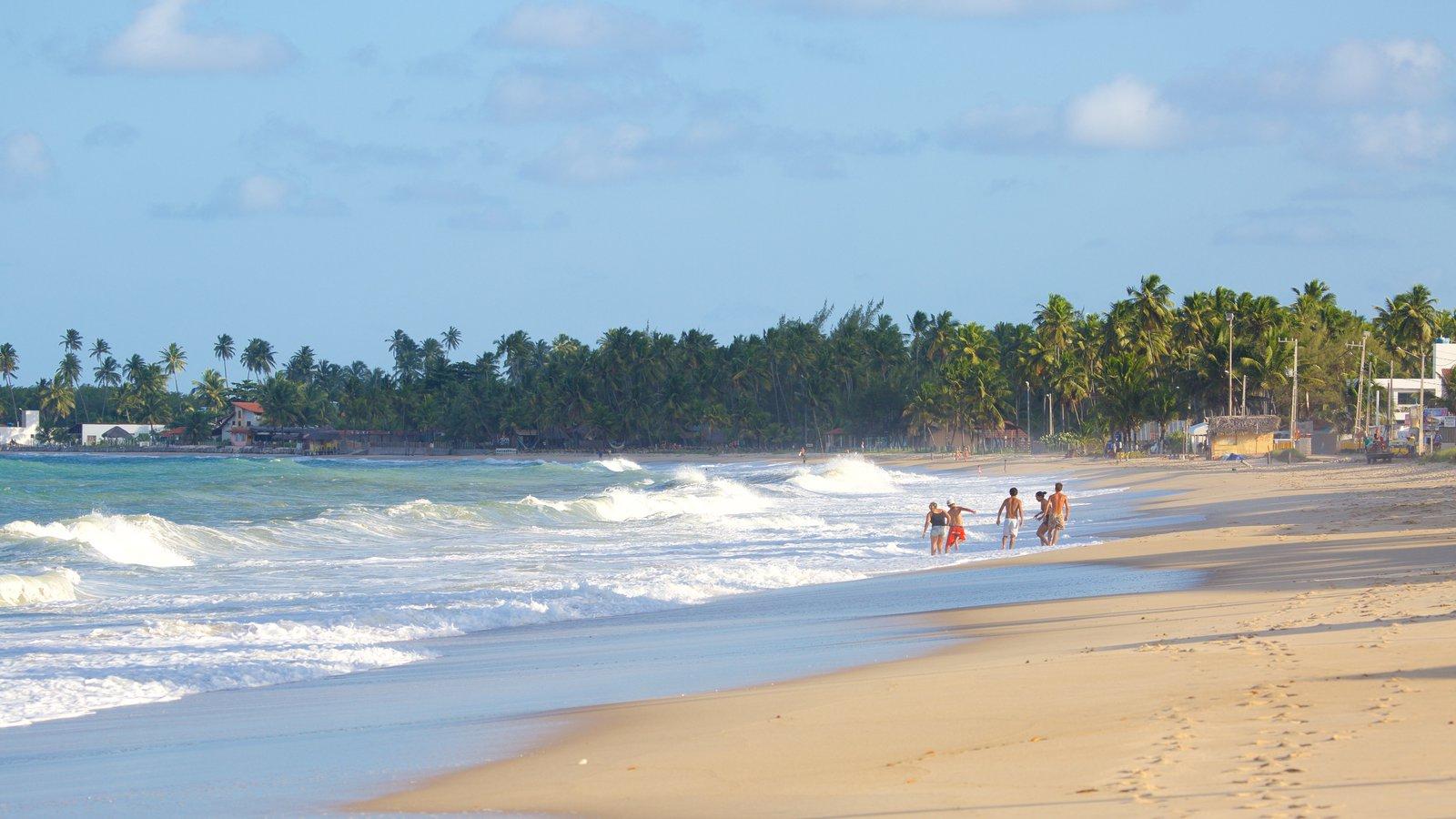 Praia de Maracaípe que inclui cenas tropicais, surfe e paisagens litorâneas