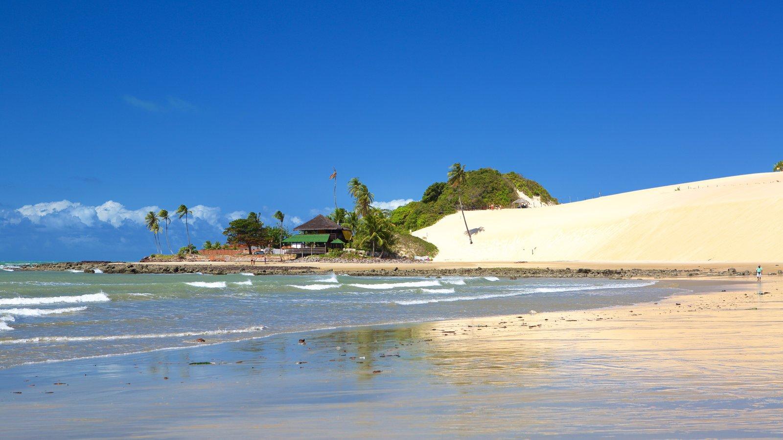Praia de Genipabú mostrando paisagens litorâneas, uma praia de areia e cenas tropicais