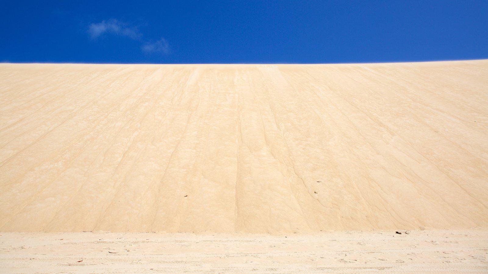 Praia de Genipabú mostrando uma praia