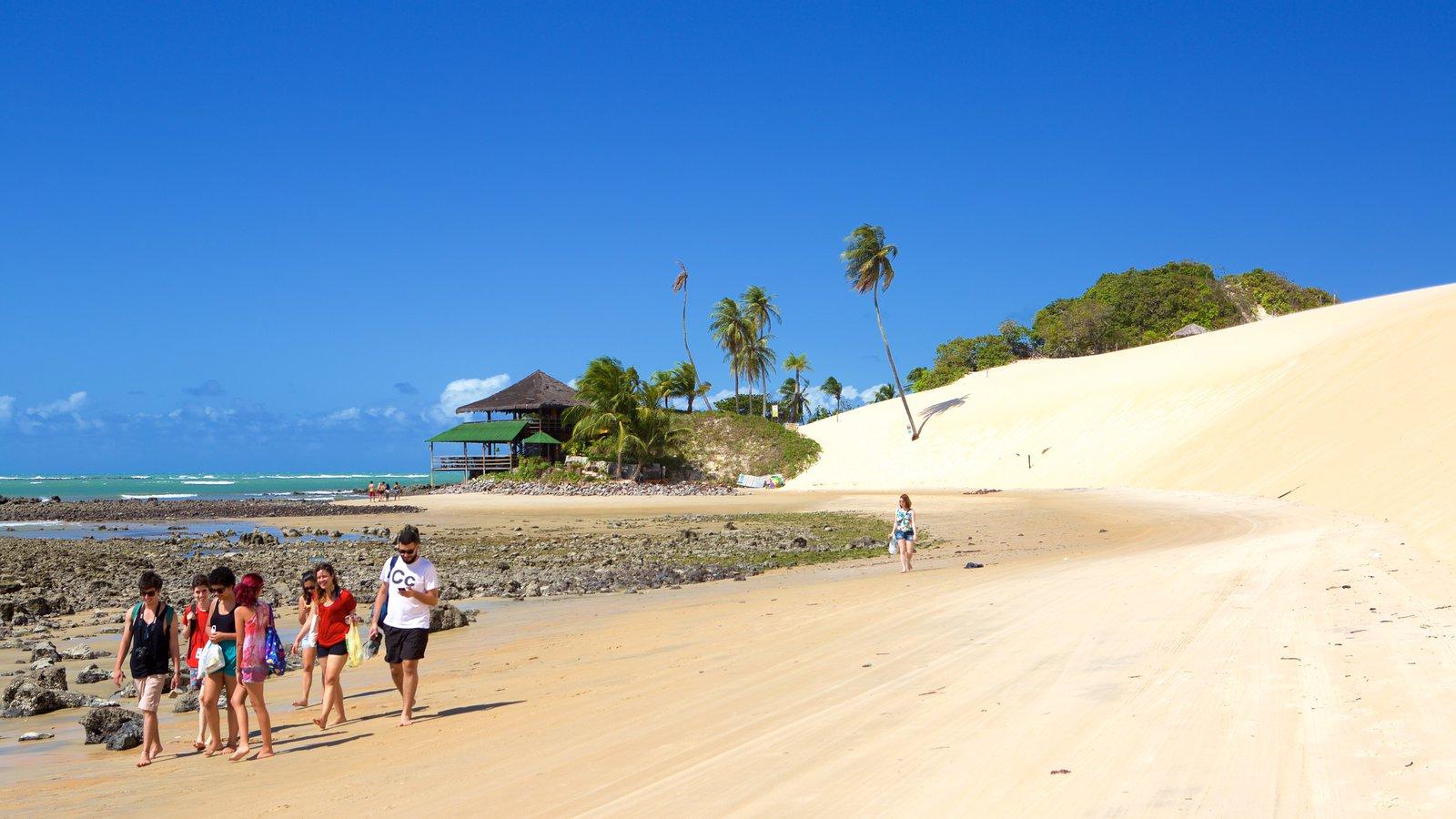 Praia de Genipabú mostrando uma praia de areia, paisagens litorâneas e cenas tropicais