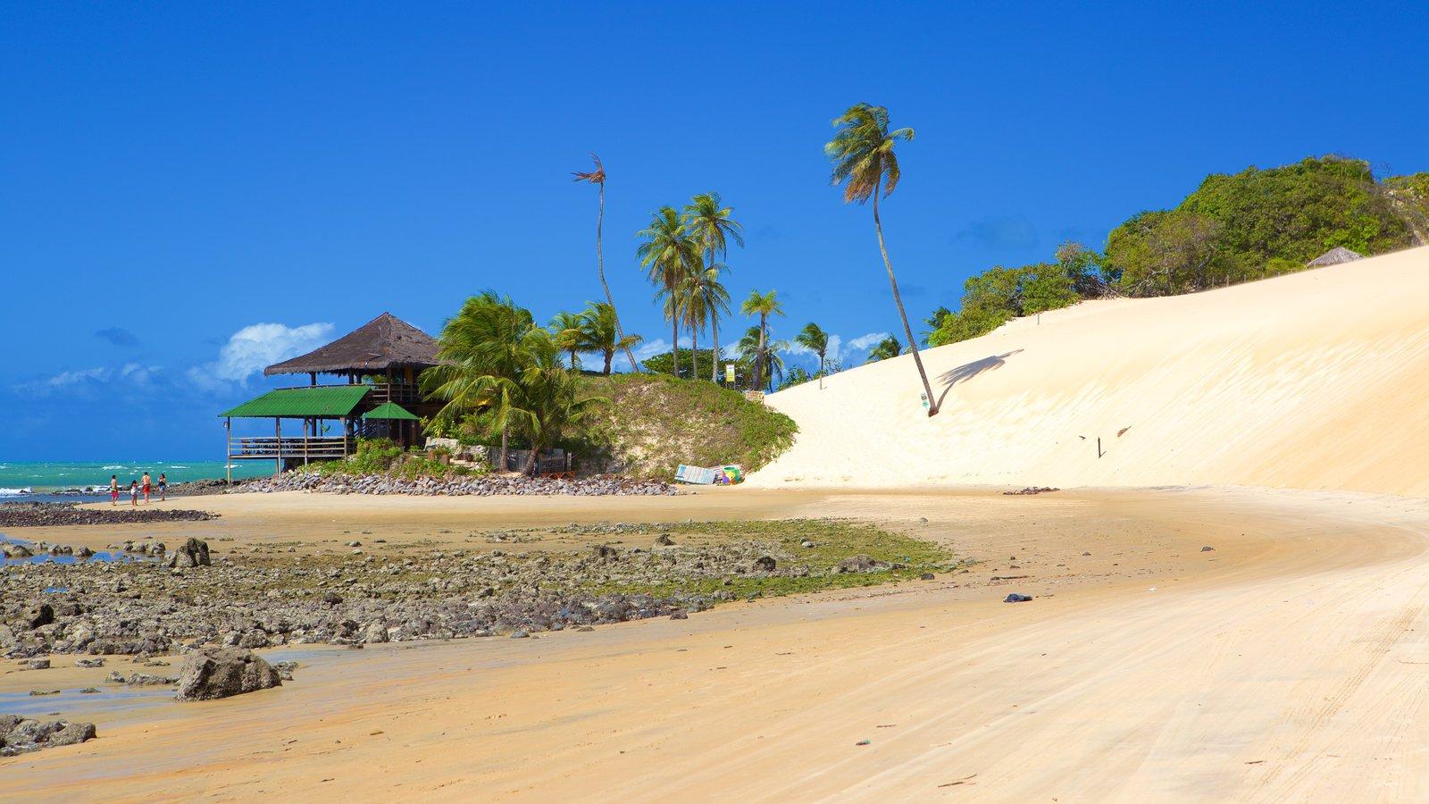 Praia de Genipabú que inclui cenas tropicais, paisagens litorâneas e uma praia de areia