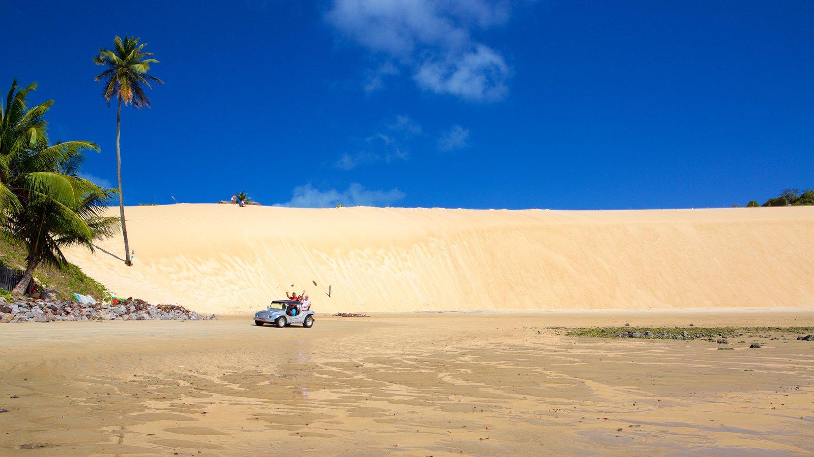 Praia de Genipabú caracterizando uma praia de areia e paisagens litorâneas