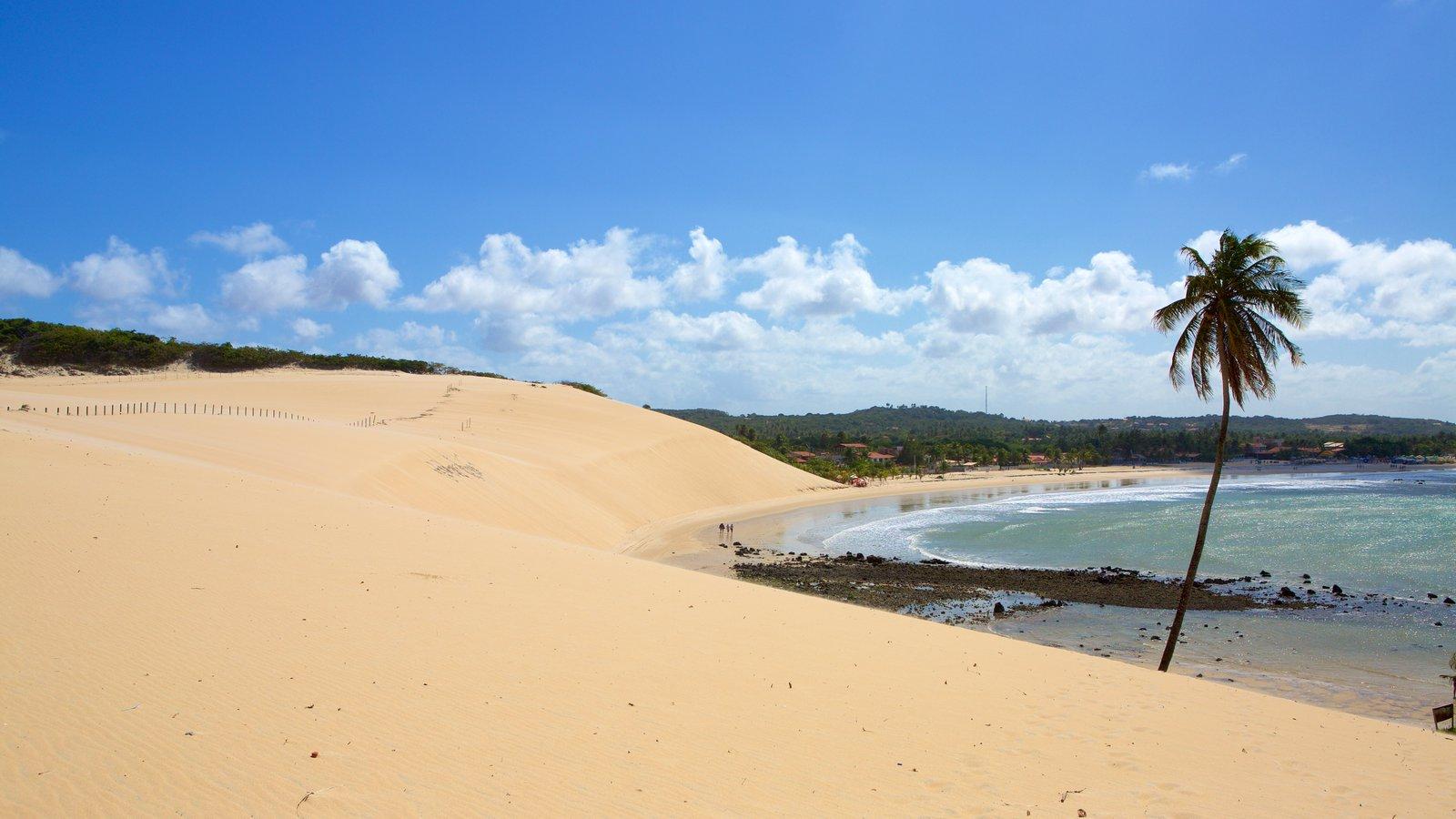 Praia de Genipabú caracterizando paisagens litorâneas, cenas tropicais e uma praia