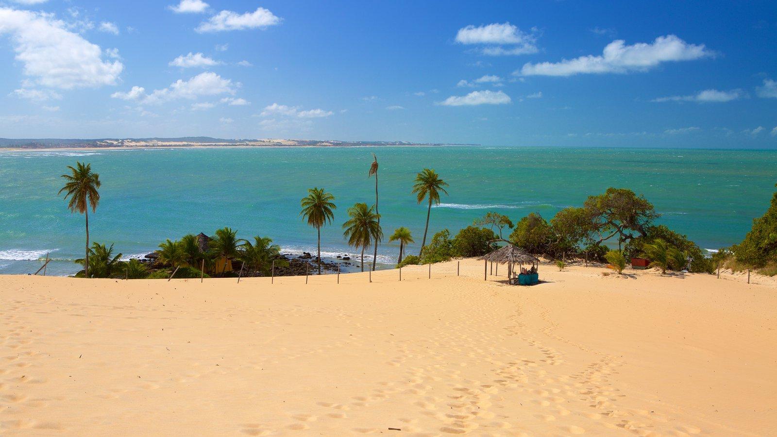 Praia de Genipabú mostrando paisagens litorâneas, cenas tropicais e uma praia