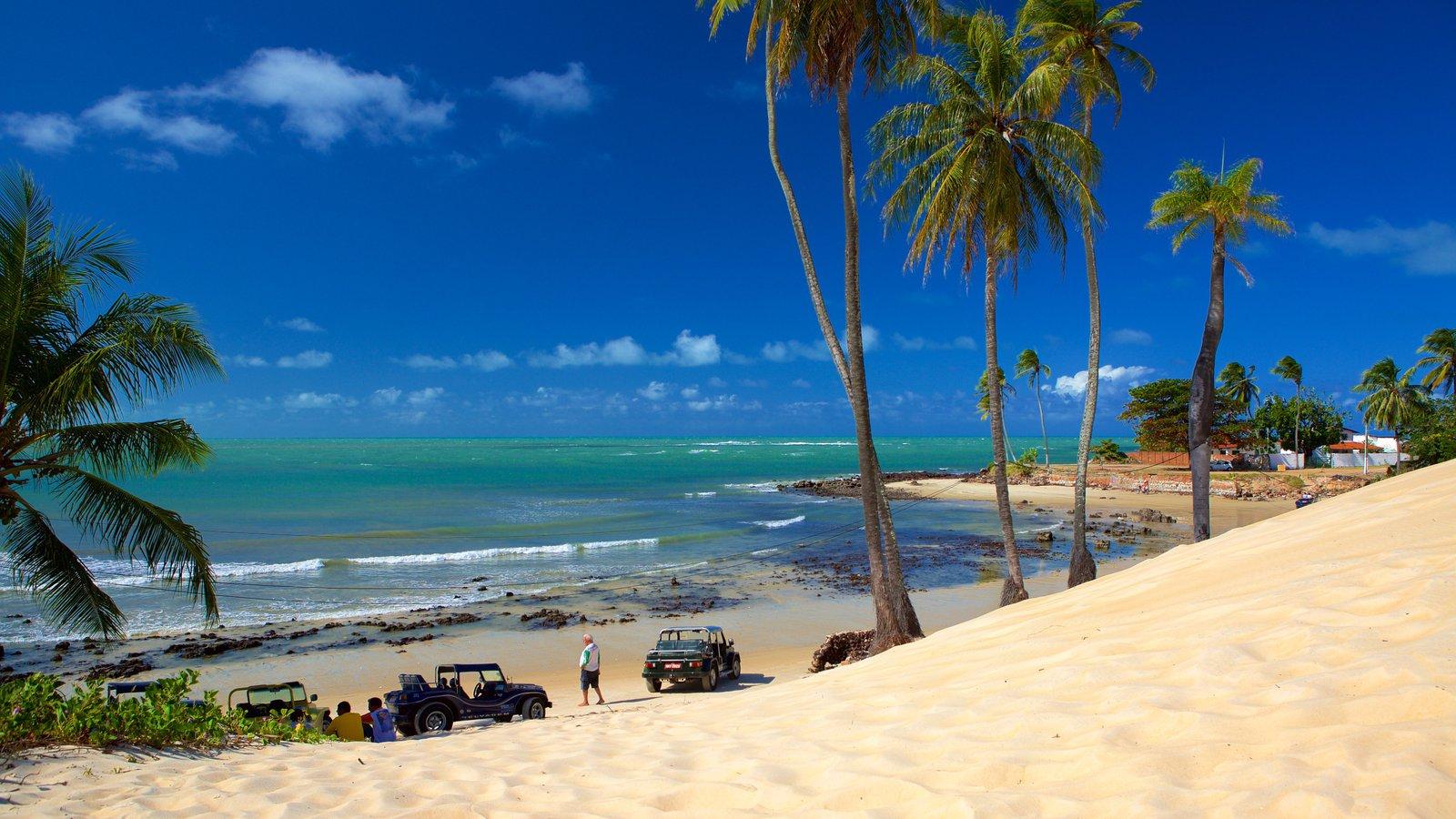 Praia de Genipabú que inclui uma praia de areia, cenas tropicais e off-road