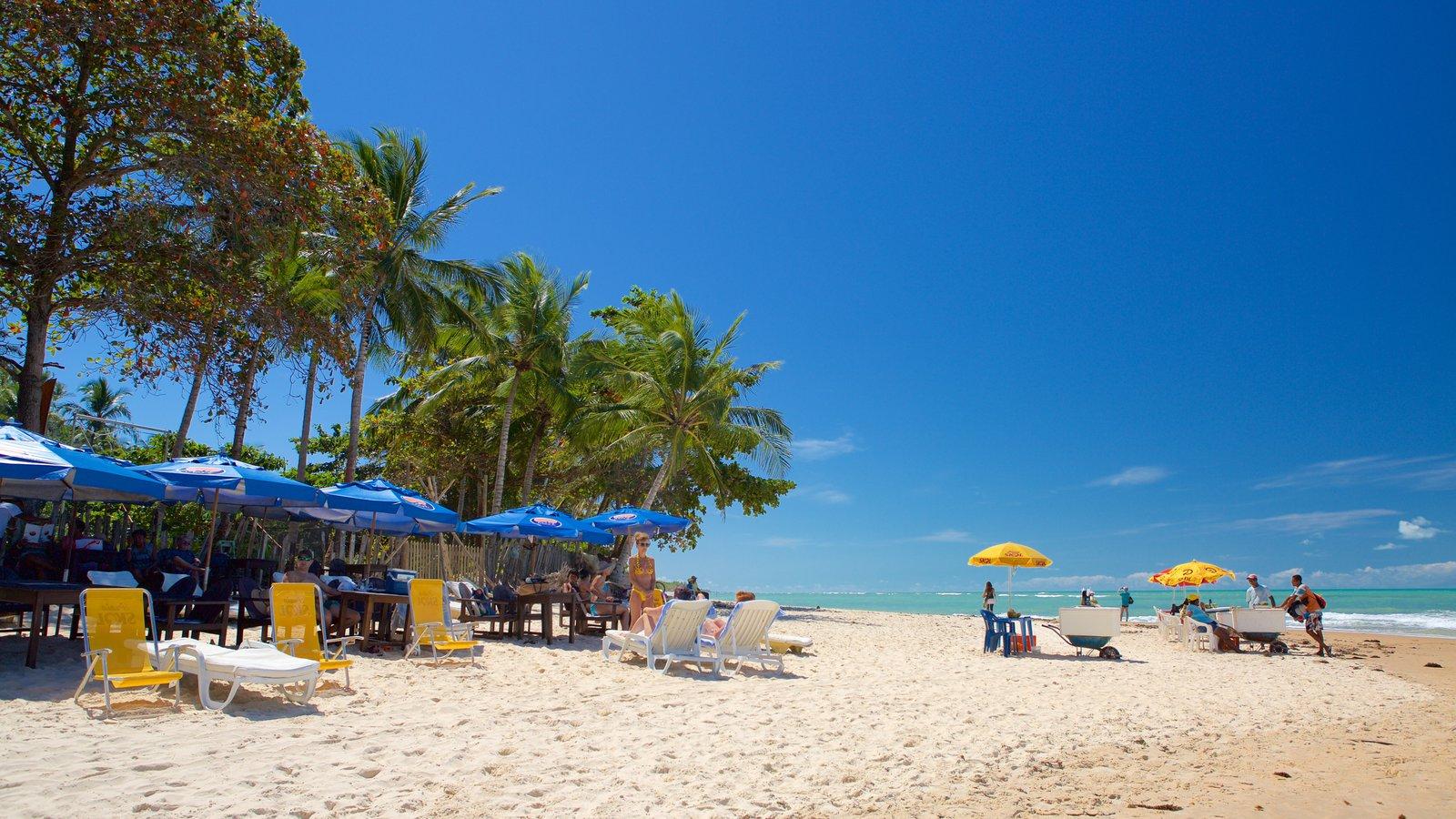 Praia de Pitinga mostrando uma praia e paisagens litorâneas