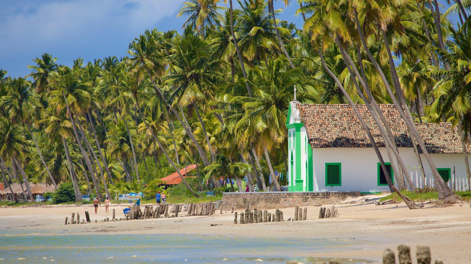 Tamandaré mostrando uma igreja ou catedral, paisagens litorâneas e uma praia