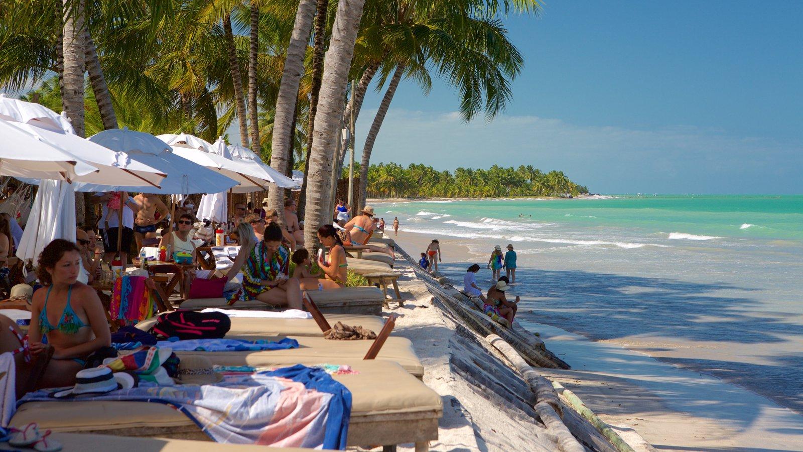 Praia de Ipioca mostrando paisagens litorâneas, um hotel de luxo ou resort e uma praia