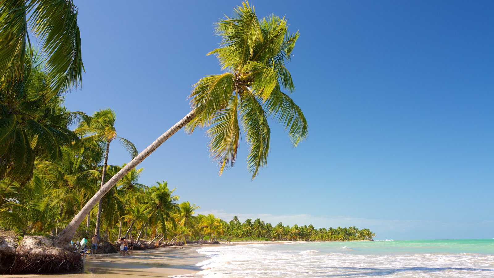 Praia de Ipioca que inclui ondas, cenas tropicais e paisagens litorâneas