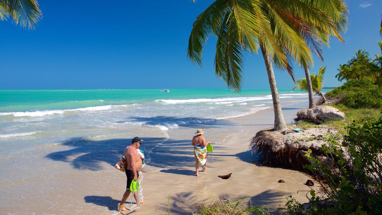 Praia de Ipioca que inclui paisagens litorâneas, cenas tropicais e ondas