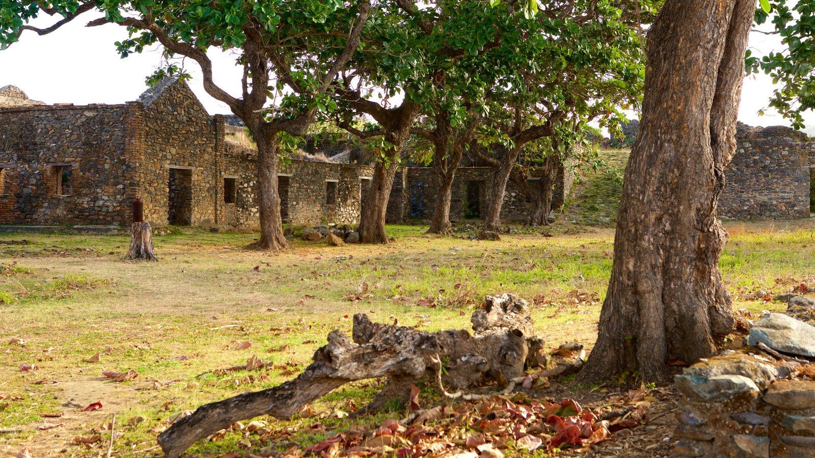 Forte dos Remédios mostrando uma ruína, elementos de patrimônio e um jardim