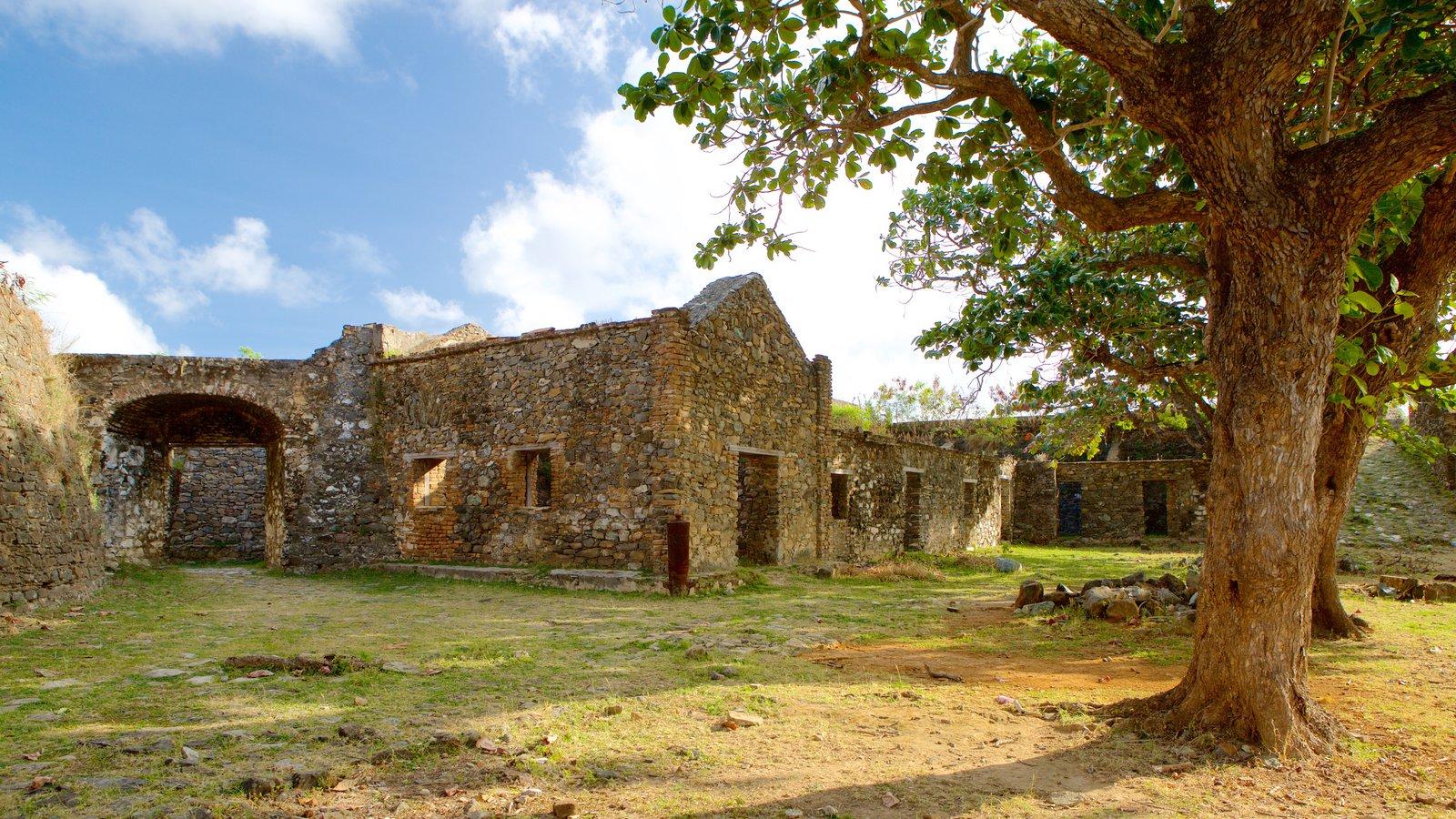 Forte dos Remédios mostrando um jardim, ruínas de edifício e elementos de patrimônio