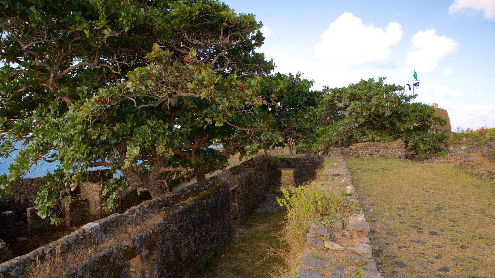 Forte dos Remédios que inclui um parque, uma ruína e elementos de patrimônio
