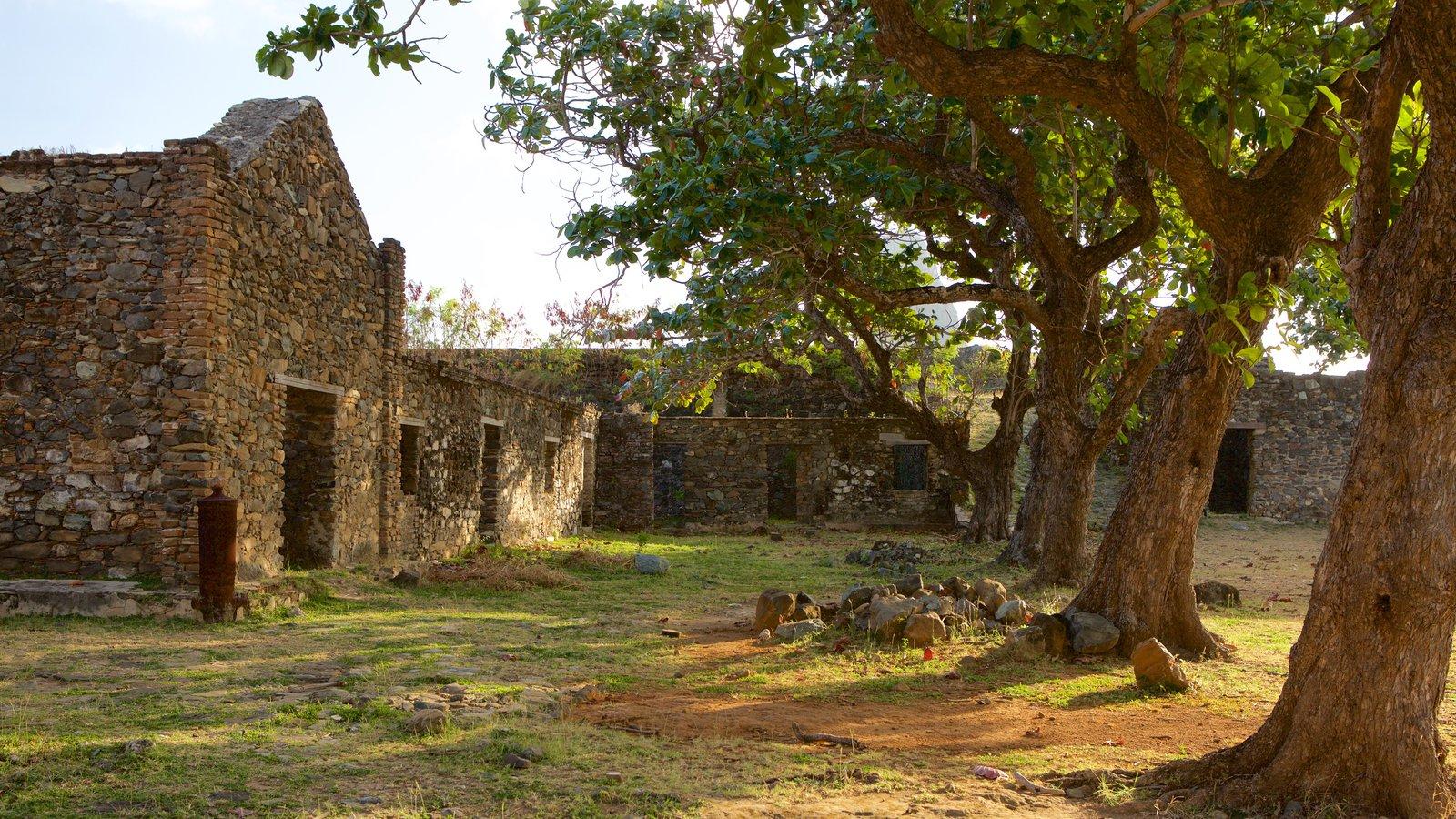 Forte dos Remédios caracterizando ruínas de edifício e elementos de patrimônio