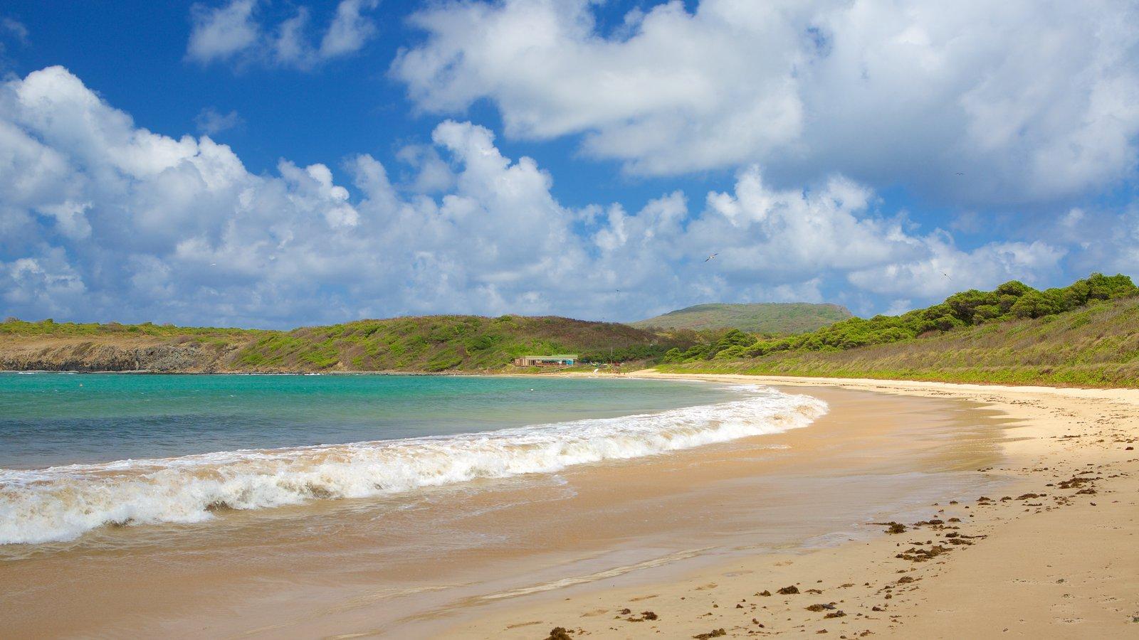 Praia do Sueste mostrando uma praia de areia e paisagens litorâneas