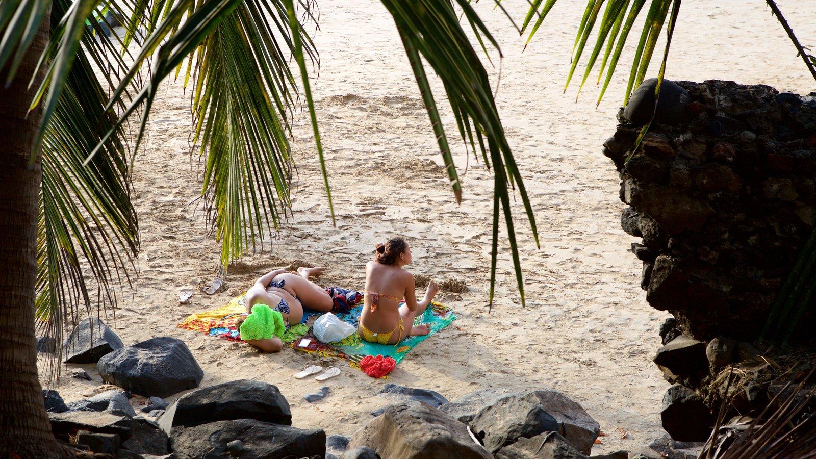 Praia do Cachorro mostrando paisagens litorâneas e uma praia de areia assim como um pequeno grupo de pessoas