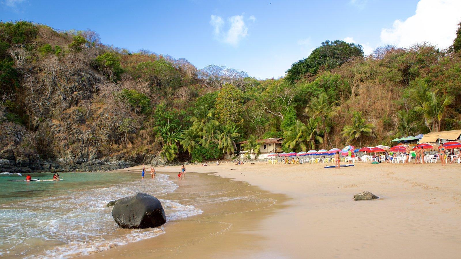 Praia do Cachorro mostrando uma praia, montanhas e paisagens litorâneas