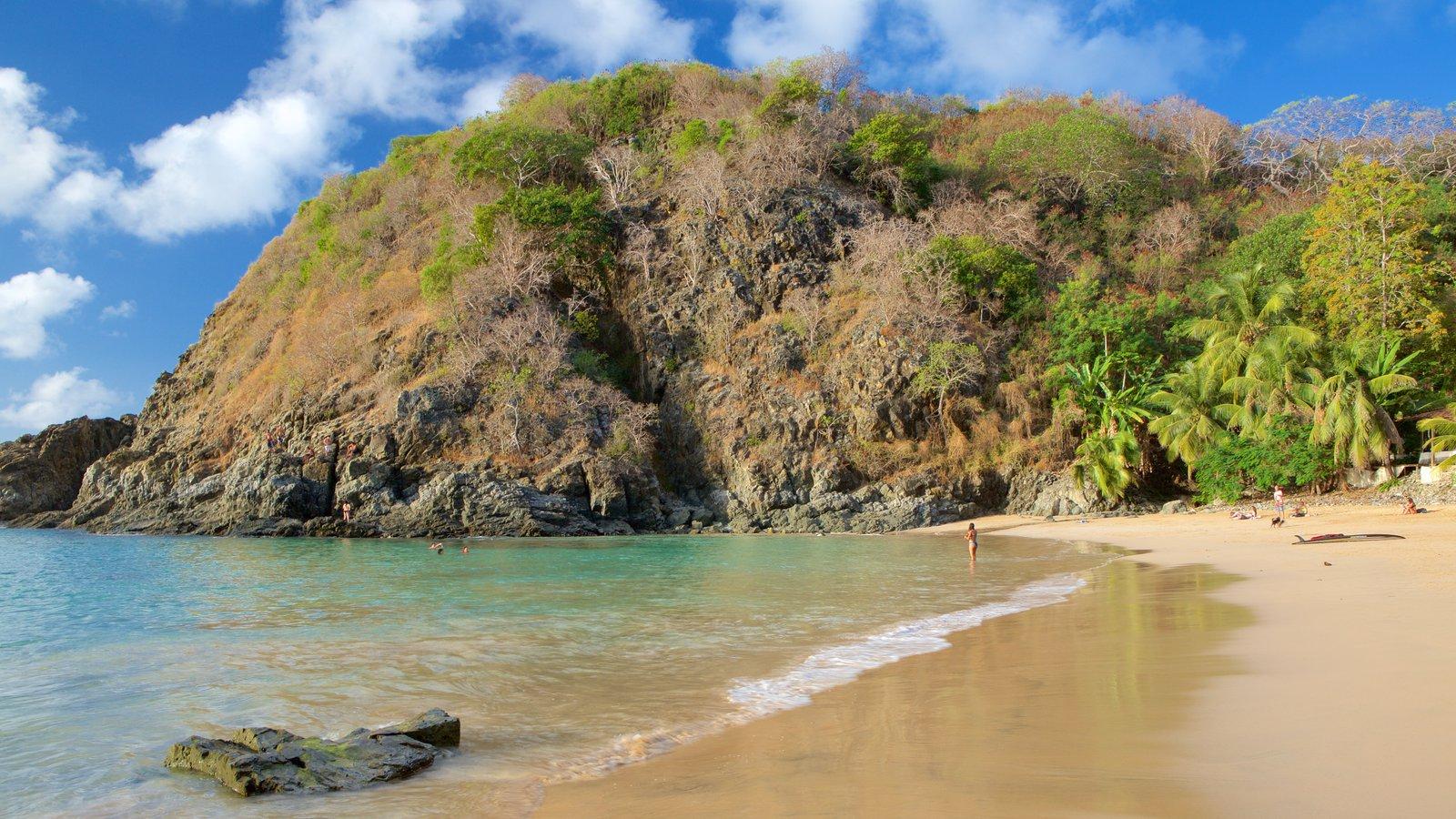 Praia do Cachorro caracterizando paisagens litorâneas, montanhas e uma praia de areia