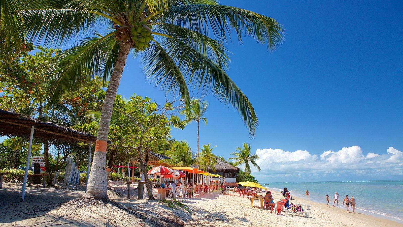 Praia do Mutá mostrando uma praia de areia, paisagens litorâneas e cenas tropicais