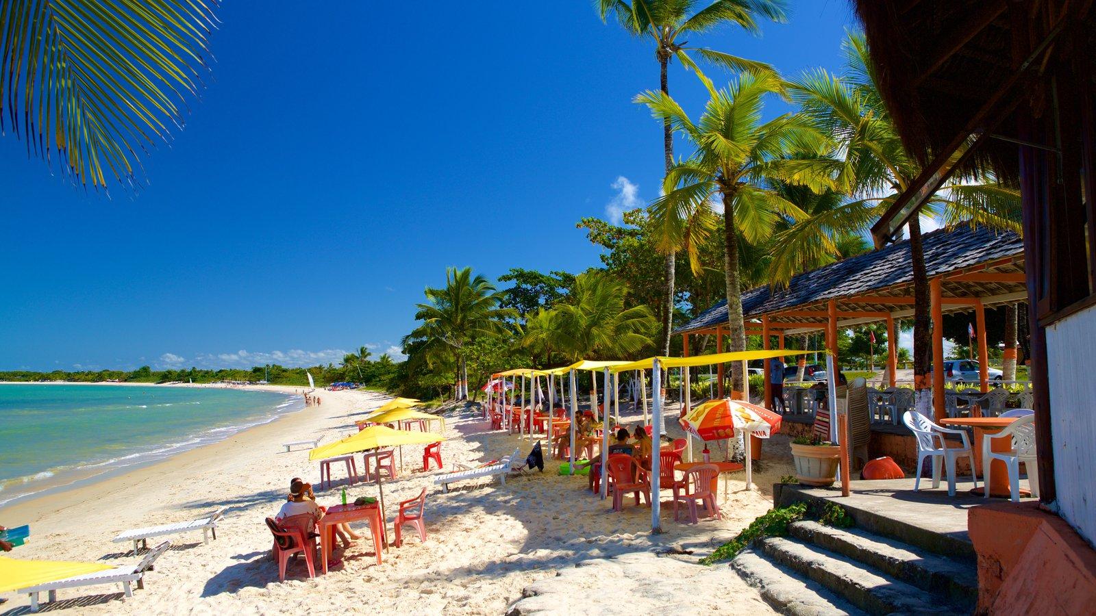 Praia do Mutá caracterizando uma praia, paisagens litorâneas e jantar ao ar livre