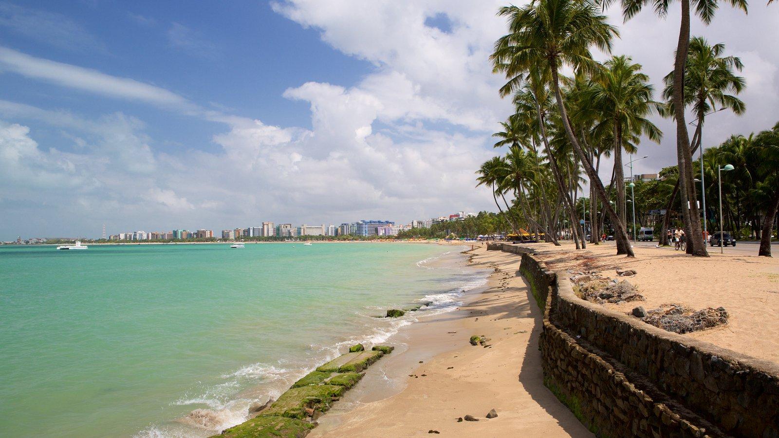 Praia de Ponta Verde caracterizando uma praia, cenas tropicais e paisagens litorâneas