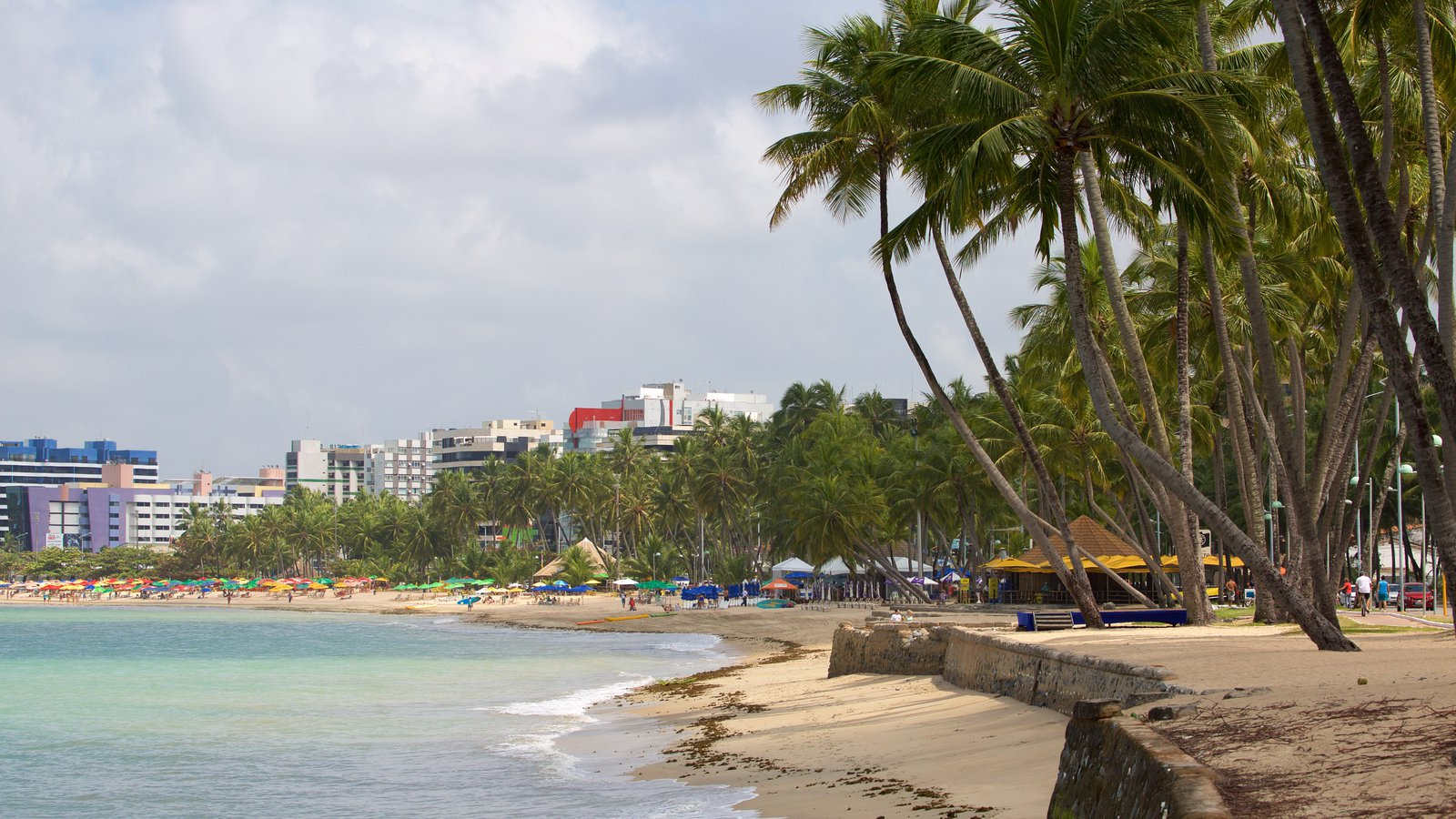 Praia de Ponta Verde caracterizando cenas tropicais, uma praia e linha do horizonte