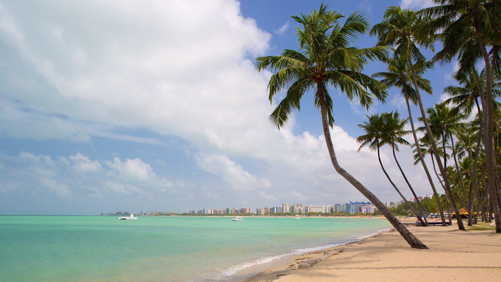 Praia de Ponta Verde caracterizando uma praia de areia, cenas tropicais e paisagens litorâneas