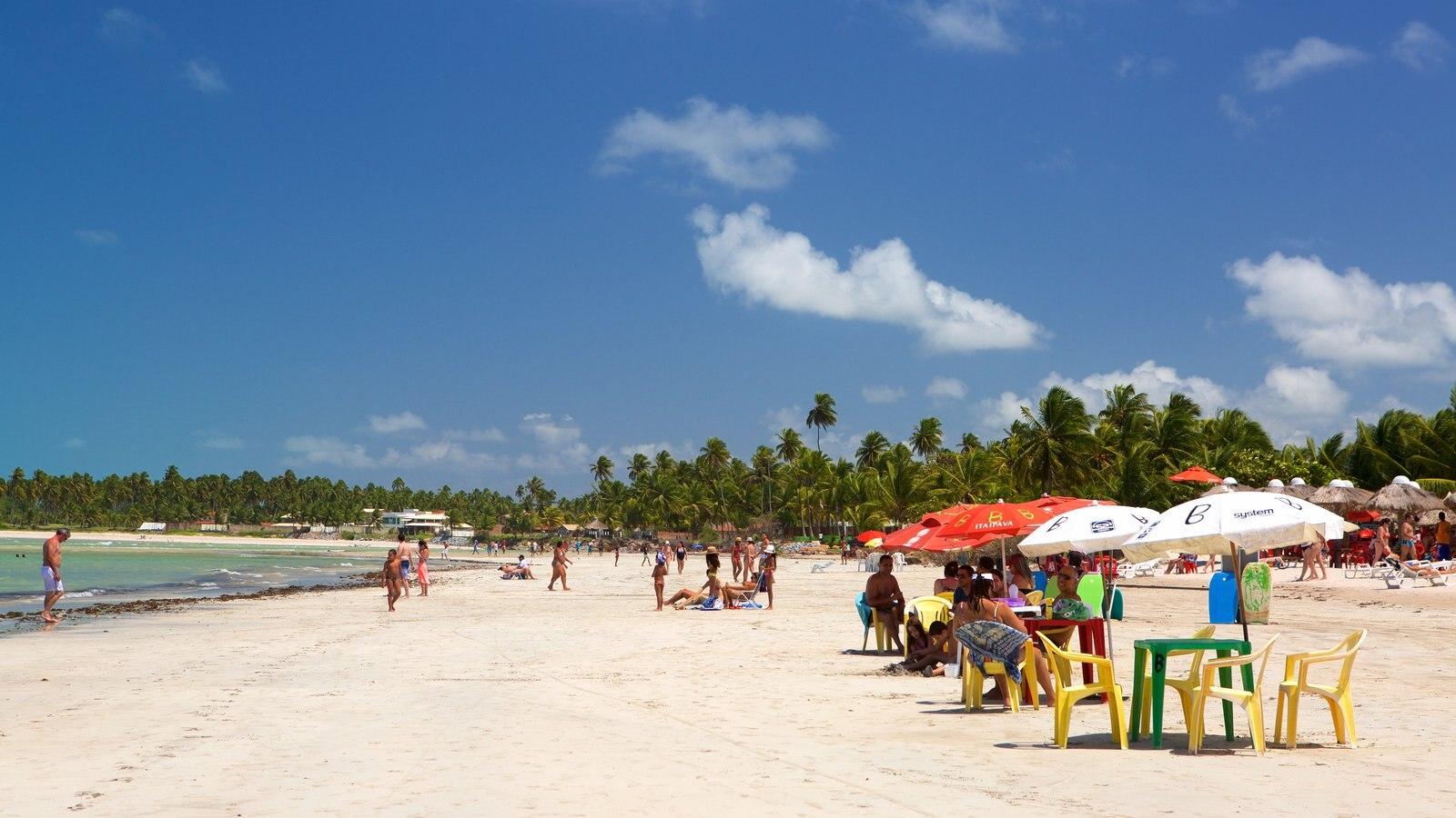 Praia de Paripueira mostrando uma praia, paisagens litorâneas e cenas tropicais