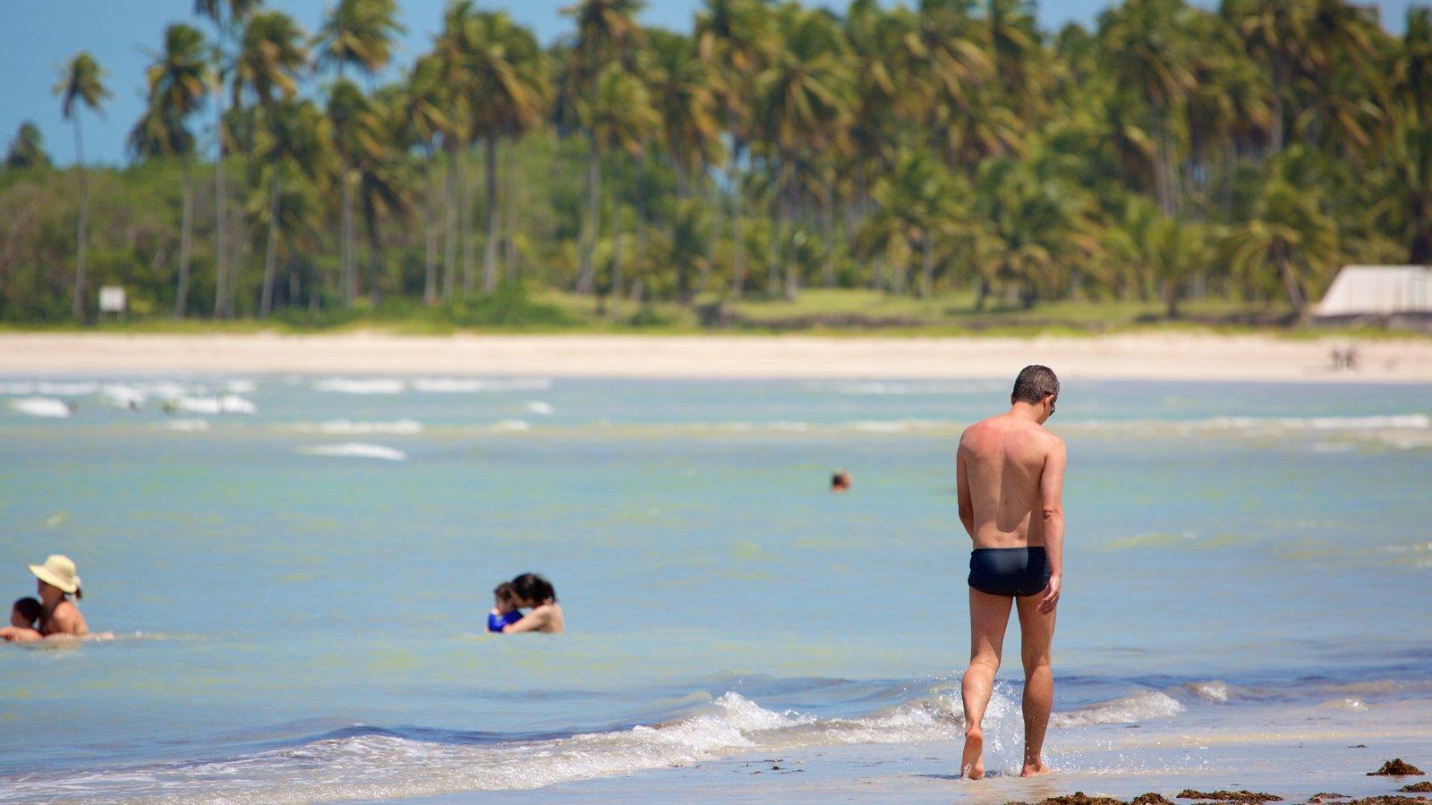 Praia de Paripueira mostrando uma praia de areia, paisagens litorâneas e natação