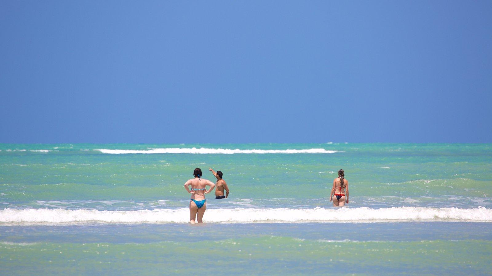 Praia de Paripueira que inclui natação, surfe e paisagens litorâneas