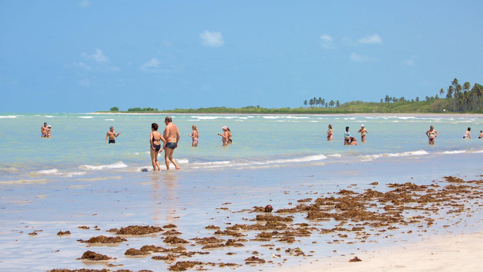 Praia de Paripueira que inclui natação, uma praia e paisagens litorâneas