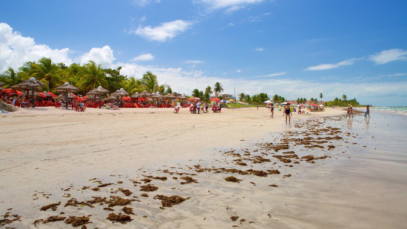 Praia de Paripueira caracterizando cenas tropicais, paisagens litorâneas e uma praia