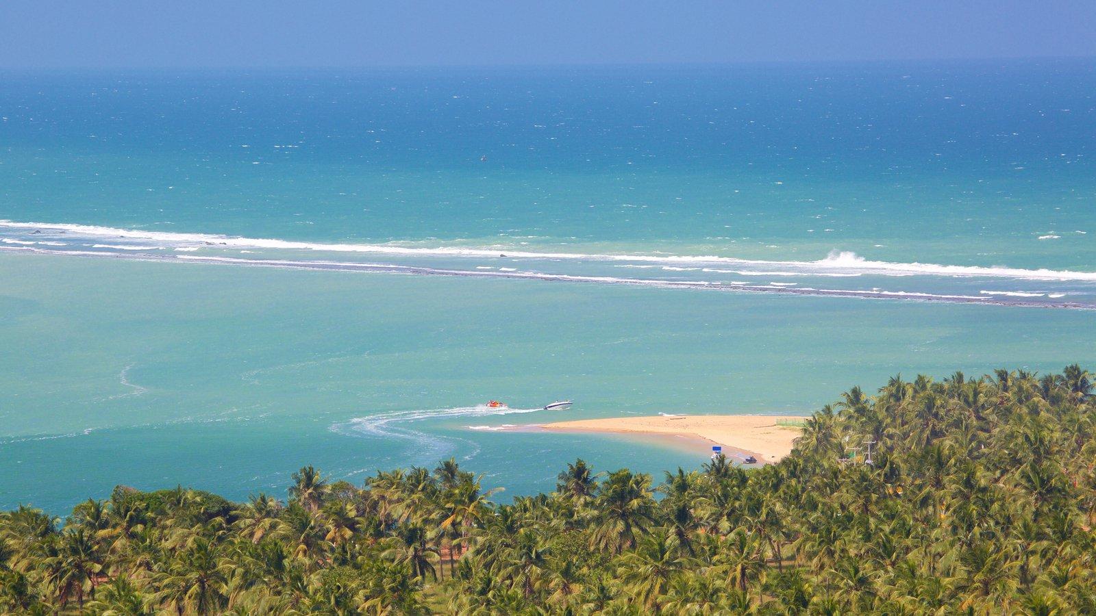 Maceió que inclui paisagens litorâneas, cenas tropicais e uma praia de areia
