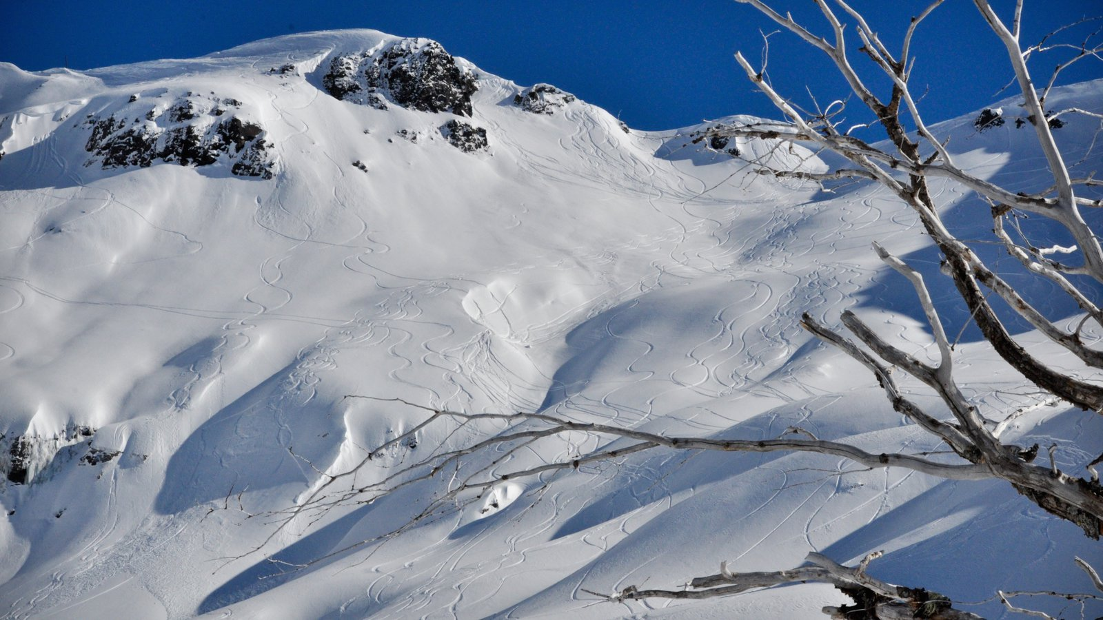 winter pictures: view images of chapelco ski resort