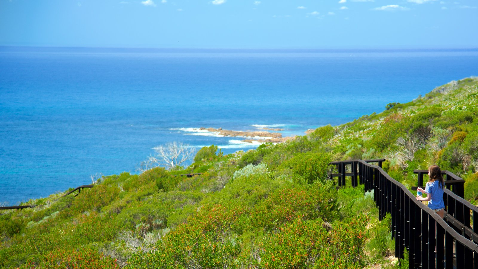 Cape Naturaliste Lighthouse featuring general coastal views and landscape views as well as an individual child