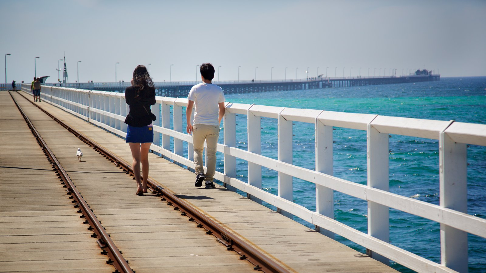 Busselton Jetty showing general coastal views as well as a couple